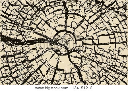Old cracked wooden stump texture, hand drawn vector illustration
