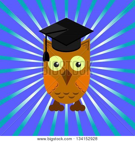 owl in an academic cap on a blue background with divergent rays poster