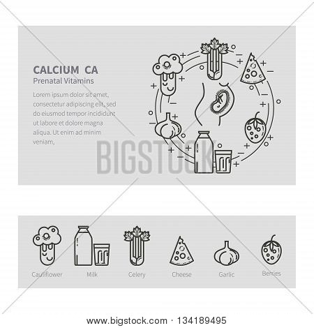 Feeding pregnant. Vector set in the trendy linear style. The concept of healthy eating. Prenatal vitamins. The template is easily customizable