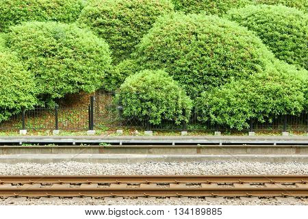 Train Track With Green Plants In Japan Station