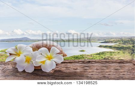 Focused at white yellow flowers plumeria or frangipani bunch in sea conch shell flowers on wooden table or log or timber table with wide reservoir or lake and mountain in puffy clouds sky view background