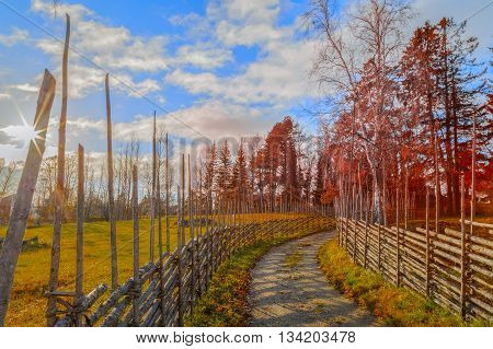 swedish fence out of branches in autumn
