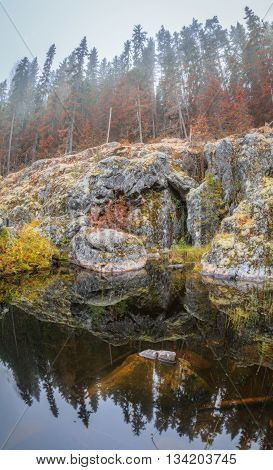 river with rock in watertrees and fog
