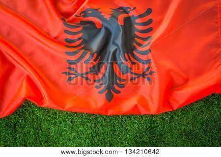 Flags of Albania on green grass