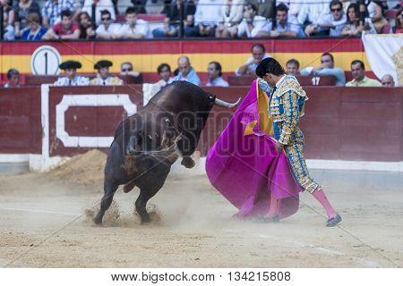 Jaen Spain - October 18 2010: The Spanish Bullfighter Ivan Fandiño bullfighting with the crutch in the Bullring of Jaen Spain