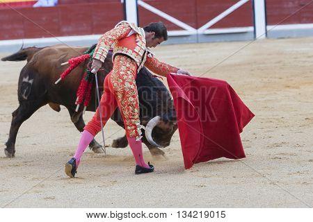 Jaen Spain - October 18 2010: The Spanish Bullfighter El Fandi bullfighting with the crutch in the Bullring of Jaen Spain