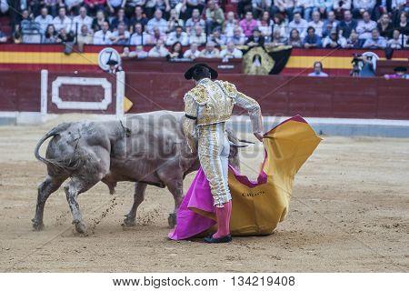 Jaen Spain - October 18 2010: The Spanish Bullfighter Cayetano Rivera bullfighting with the crutch in the Bullring of Jaen Spain