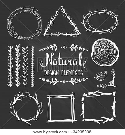 Natural design elements. Forest vector fames on the chalkboard.