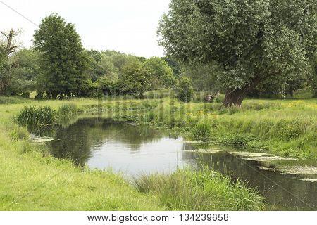 River running through a field in Hertfordshire.