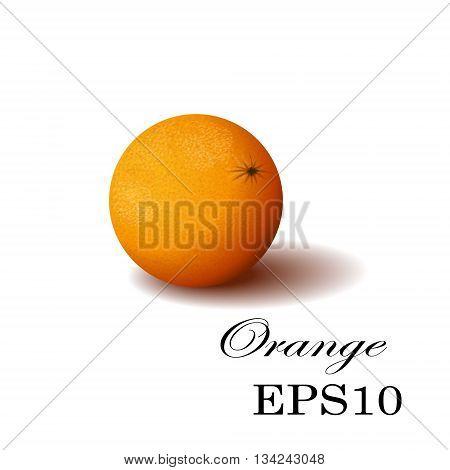 Orange isolated Vector Orange. Illustration of Orange. Orange on transparent background. Juicy Orange tropical fruit.