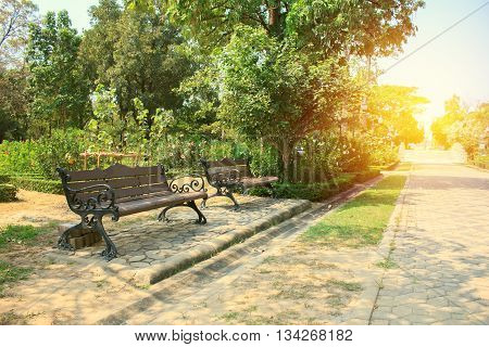 Bench In Beautiful City Park