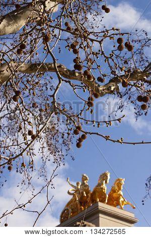 Platanus tree and Quadriga of Aurora in Ciutadella Parc in Barcelona Spain.