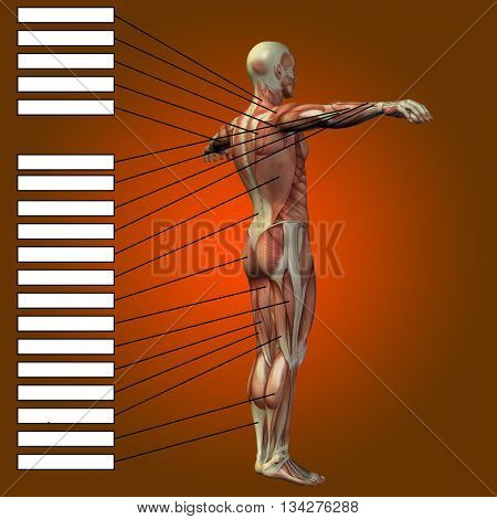 3D illustration of a concept or conceptual male or human anatomy, a man with muscles and textbox on red gradient background