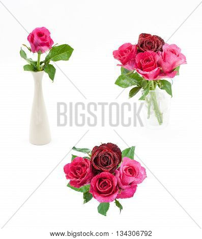 Pink Rose In Vase Isolated Over White