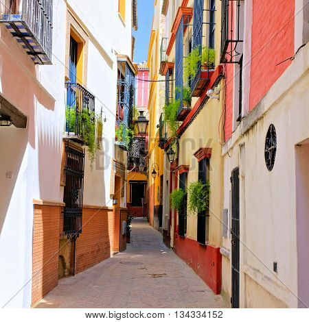 Colorful Street In The Beautiful Old Town Of Sevilla, Spain