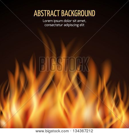 Abstract fire flame vector background. Fire hot blaze and power fire illustration