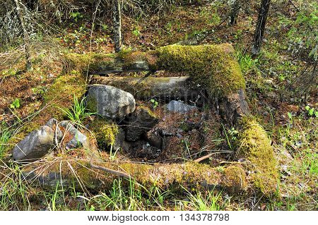 old well water parapet in the forest