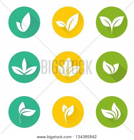 Vector tropical set leaves. Collection green tree leaves. Natural green leafs set. Leafs set element floral color garden art. Tropical leaves collection. Natural green tropical set leaves. Flat leafs.