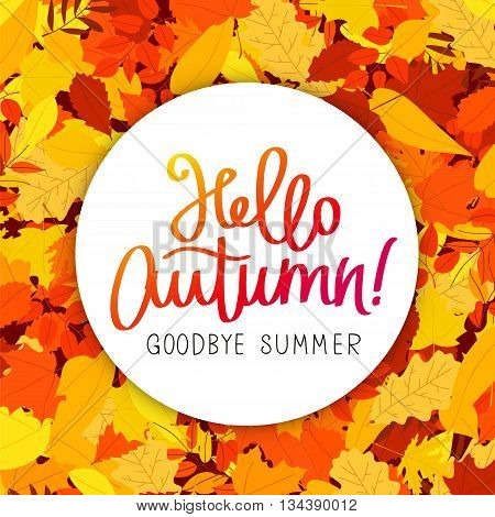 Hello Autumn. Goodbye Summer. The trend calligraphy. Vector illustration on the background of autumn leaves. Concept autumn advertising.