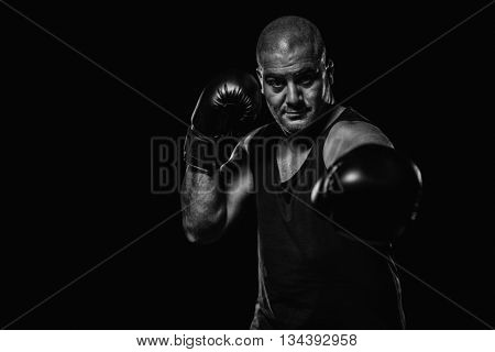 Boxer performing upright stance against black background