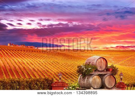 Vineyard Sunset Landscape with Wine Barrels in Romania.