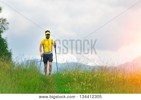 Nordic Walking In Mountain Meadow