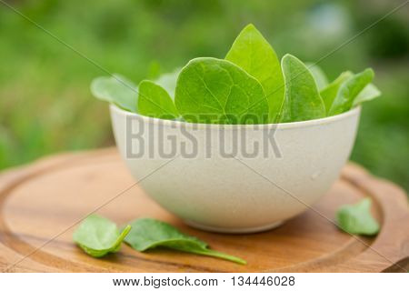 Spinach on a wooden background, in the garden. Spinach leaves closeup. Spinach - Healthy food. Shallow depth of field. Close-up shot