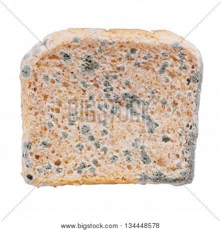 moldy slice of toast bread isolated on white