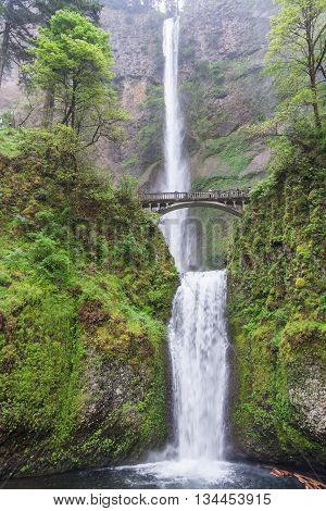 Multnomah Falls Oregon state, United State of America