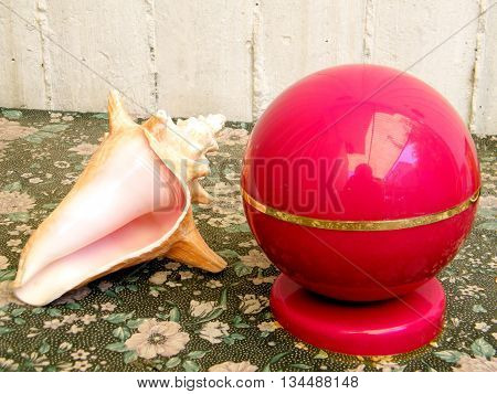 Beautiful Pink Sea shell and Red ball