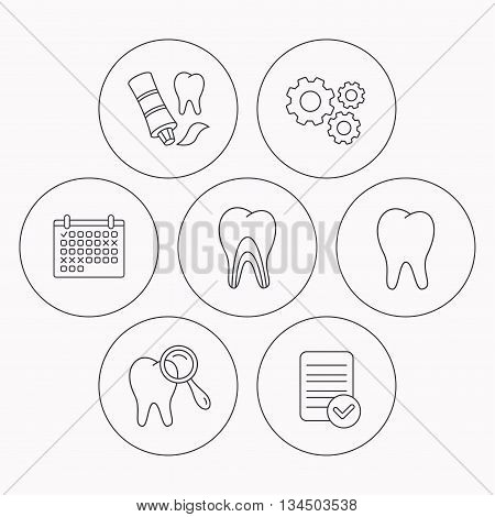 Tooth, dental diagnostics and toothpaste icons. Dentinal tubules linear sign. Check file, calendar and cogwheel icons. Vector