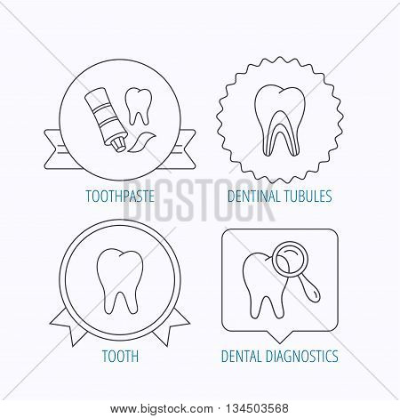 Tooth, dental diagnostics and toothpaste icons. Dentinal tubules linear sign. Award medal, star label and speech bubble designs. Vector
