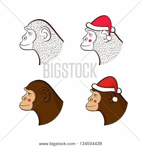 Holiday set far New year, four different monkeys in cap of Santa Claus and without, pencil drawing outline  and colorful cartoon character faces in profile, vector illustration