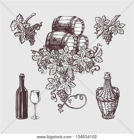 Wine and winemaking vintage set. Wine template design. Vector illustration. Sketch style design. Red wine, white wine. Handdrawn grapes.