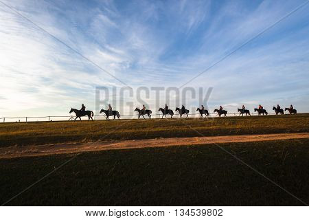 Race horses riders morning training silhouetted sky blue landscape