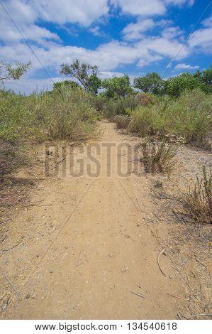 Long Desert Hiking Trail