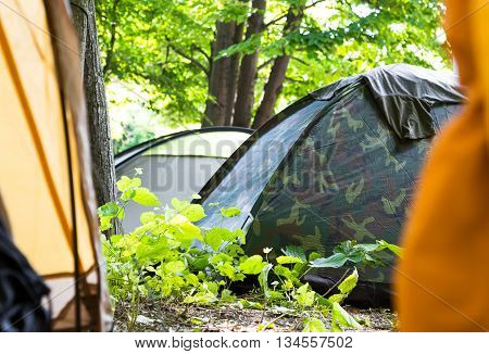 View through an open tent door of a campsite under leafy green trees with other closed tents visible pitched in the shade in a concept of adventure and a healthy active lifestyle