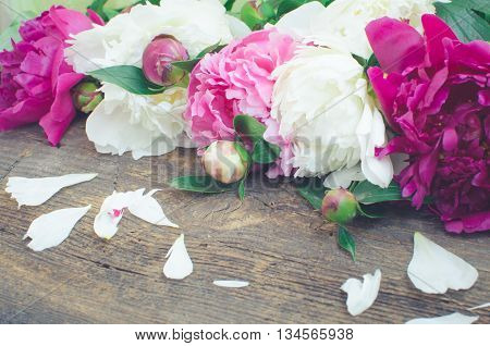 Peony background. Fuchsia, pink and white peonies on wooden table with petals. Spring flower peon. Happy Mothers Day. Mother's Day greetings card. Mothers Day gift. Toned image.