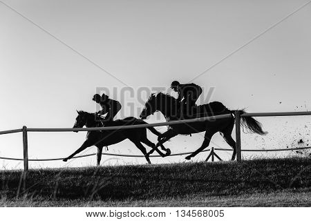Race horses riders jockey training track action morning silhouetted black white landscape.