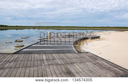Elevated viewing platform at Lake Thetis with rare living marine fossils, stromatolites, in the coastal lake landscape with sand under an overcast sky in Western Australia. poster