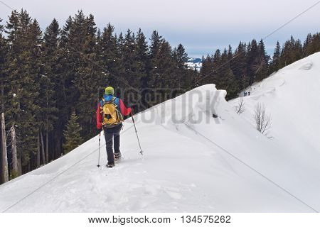 Person wearing a backpack and snowshoes or cross-country skis using poles to traverse a steep snowy slope above the tree line on an alpine peak