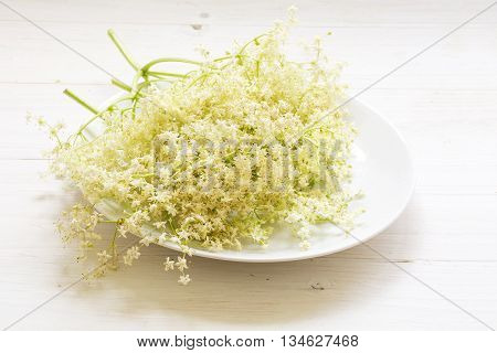 elderflowers ready to cook syrup on a plate on a white wooden background selected focus narrow depth of field