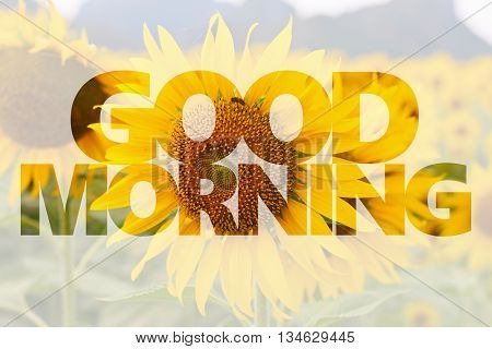 Good morning word on sunflower background for design