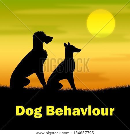 Dog Behaviour Means Actions Landscape And Pup