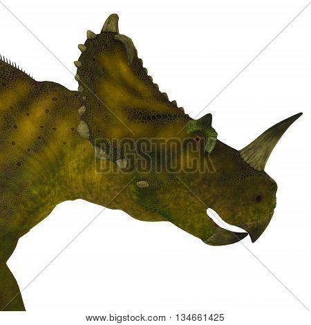 Centrosaurus Dinosaur Head 3D Illustration - Centrosaurus was a herbivorous ceratopsian dinosaur that lived in Canada during the Cretaceous Period.