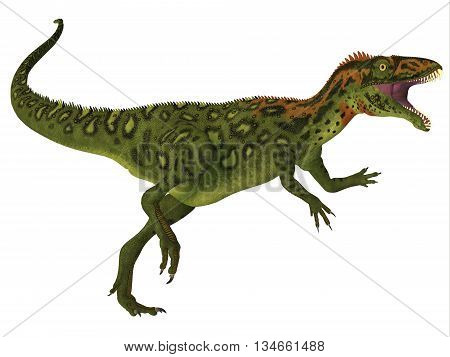 Masiakasaurus Dinosaur Body 3D Illustration - Masiakasaurus was a theropod dinosaur that lived in Madagascar during the Cretaceous period.