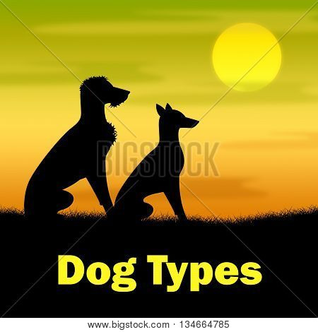 Dog Types Represents Pups Categories And Variety