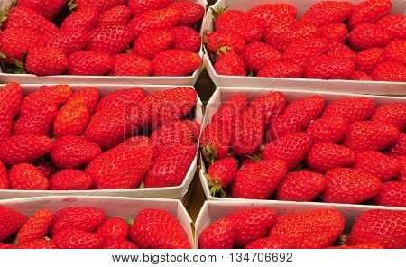 Aix en Provence France - april 21 2016 : stall of strawberries at the cours Mirabeau market