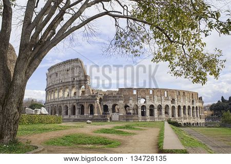 the famous Rome Colosseum in Italy wide view