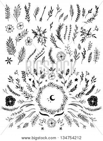 Hand Sketched Vector Vintage Elements ( Laurels, Frames, Leaves, Flowers, Swirls And Feathers). Wild